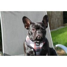 Hundegeschirr The CAMO Harness Gr. L/XL