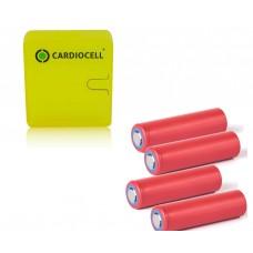4 x Panasonic/Sanyo NCR18650GA Li-Ion Akku 3,6V 3350mAh & Cardiocell Box